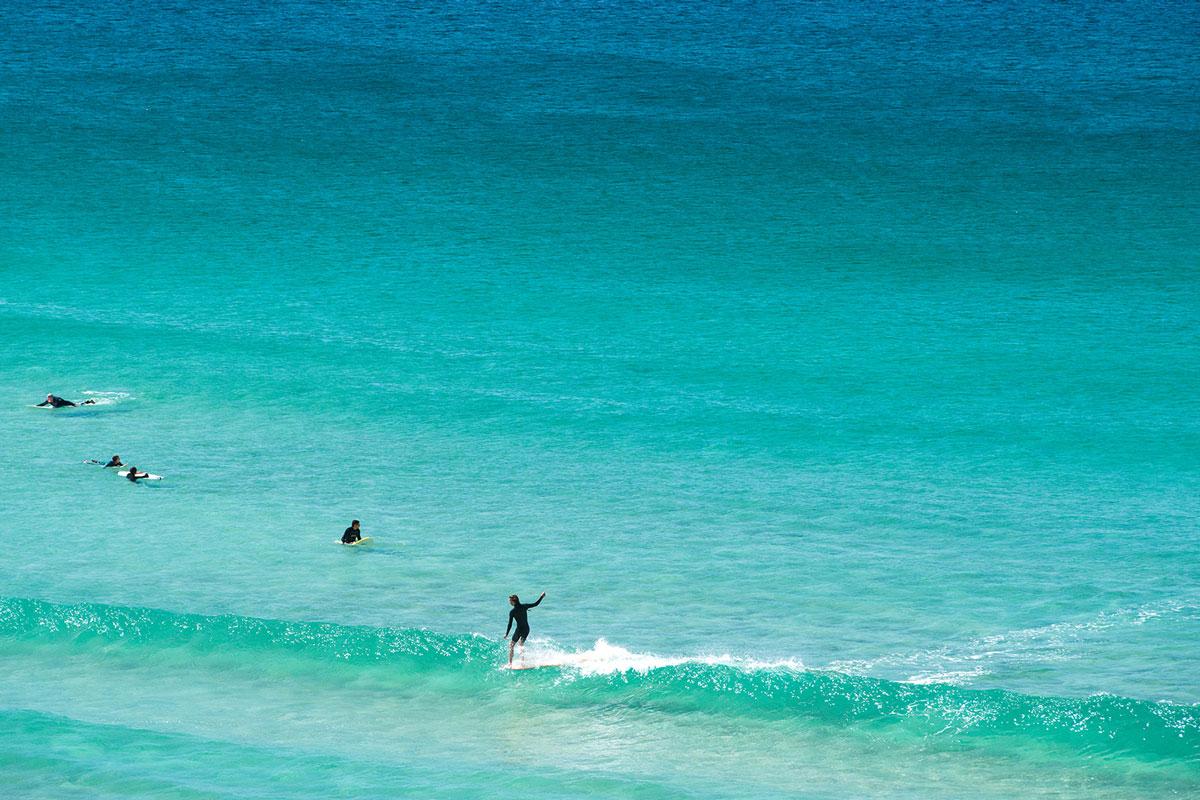 Drone Spots Great White Shark In Waters Off Famous Sydney Beach